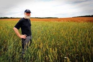 Obowiązkowe ubezpieczenia dla rolników